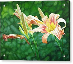 Lilies On The Web Acrylic Print