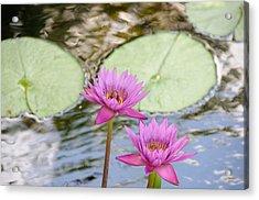 Lillies Acrylic Print by Herman Boodoo