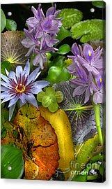 Lillies No. 6 Acrylic Print by Anne Klar