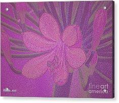 Lily Fleur Line Acrylic Print