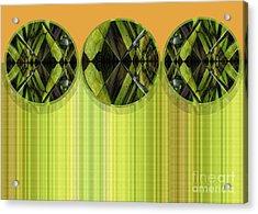 Lime Delight Acrylic Print by Ann Powell