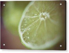Lime Acrylic Print by Samantha Wesselhoft Photography
