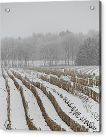 Lines In The Snow Acrylic Print by Odd Jeppesen