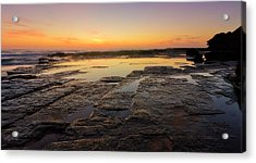 Lines Of Nature Acrylic Print by Mark Lucey