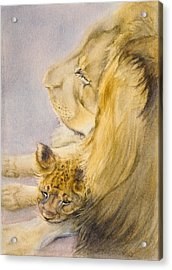 Acrylic Print featuring the painting Lion And Cub by Bonnie Rinier