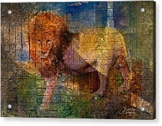 Lion Acrylic Print by Arline Wagner