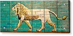 Lion Of Babylon Acrylic Print by Unknown - Local Iraqi National