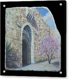 Lions Gate Acrylic Print by Miki Karni