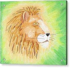 Lions Head Acrylic Print by Mark Schutter