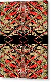 Lit0911001005 Acrylic Print by Tres Folia