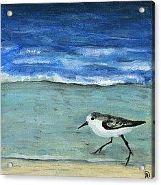 Little Bird At The Beach Acrylic Print