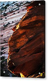 Little Brother Acrylic Print by Skip Hunt
