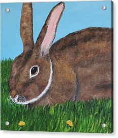 Acrylic Print featuring the painting Little Brown Bunny by Christie Minalga