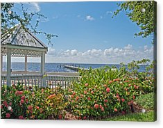 Little Harbor Tampa Bay Acrylic Print by John Black
