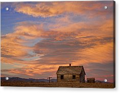 Little House On The Colorado Prairie Acrylic Print by James BO  Insogna