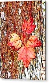 Little Limb Acrylic Print
