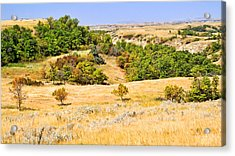 Little Missouri River Grasslands Acrylic Print by Bill Morgenstern