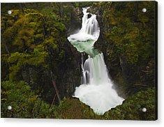 Little Qualicum Falls Provincial Park Acrylic Print by Mike Grandmailson