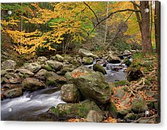 Little River I Acrylic Print by Charles Warren