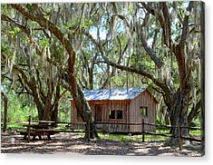 Live Oak Cabin Acrylic Print by Bob Jackson