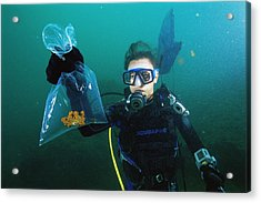 Live Specimen Collection Acrylic Print by Alexis Rosenfeld