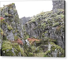 Acrylic Print featuring the photograph Living Stone   by Louise Peardon