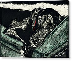 Lizzie The Dog Acrylic Print by Robert Goudreau