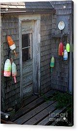 Lobsterman's House Acrylic Print by Brenda Giasson