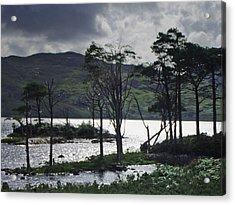 Loch Assynt Acrylic Print by Steve Watson