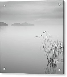 Loch Lomond Grass Acrylic Print by Billy Currie Photography
