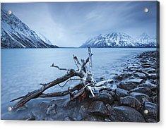 Log Along The Shores Of Kathleen Lake Acrylic Print by Robert Postma