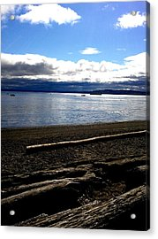 Logs At Point Defiance Acrylic Print