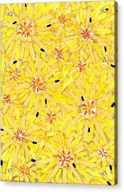 Loire Sunflowers Three Acrylic Print by Jason Messinger