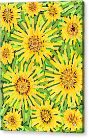Loire Sunflowers Two Acrylic Print by Jason Messinger