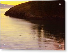 Lone Bird At Rosario Beach Point Acrylic Print by Randall Thomas Stone