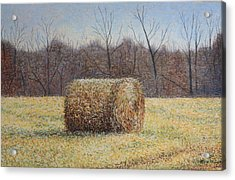 Acrylic Print featuring the painting Lone Haybale by Patsy Sharpe
