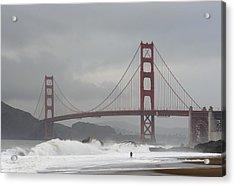Lone Surfer Acrylic Print by Howard Knauer