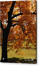 Acrylic Print featuring the photograph Lone Tree by Anne Raczkowski