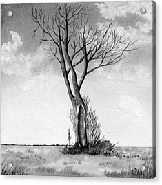 Lone Tree On The Prairie Acrylic Print