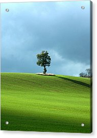 Lone Tree Sintinel Acrylic Print by Duncan Nelson