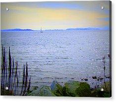 Lonely Sailboat II Acrylic Print
