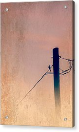 Lonely Soldier Acrylic Print by Susan Bordelon