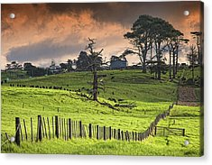 Long Bay Fields Acrylic Print by Mark Meredith