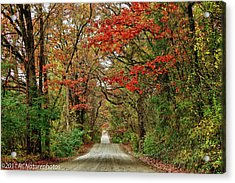Acrylic Print featuring the photograph Long Bumpy Dirt Road by Rachel Cohen