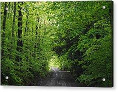 Long Lost Road Acrylic Print by April  Robert