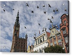 Long Market With Pigeons, Town Hall Acrylic Print by Keenpress