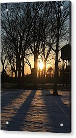 Long Shadows Acrylic Print by Peter Chilelli