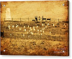 Looking At History Acrylic Print by Terrie Taylor