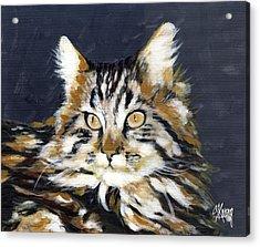 Looking At Me? Acrylic Print