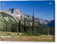 Acrylic Print featuring the photograph Looking Back by Katie LaSalle-Lowery